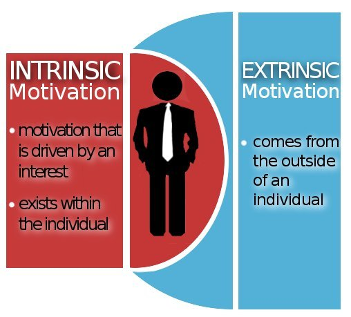 Extrinsic Vs Intrinsic Motivation Organizational ...